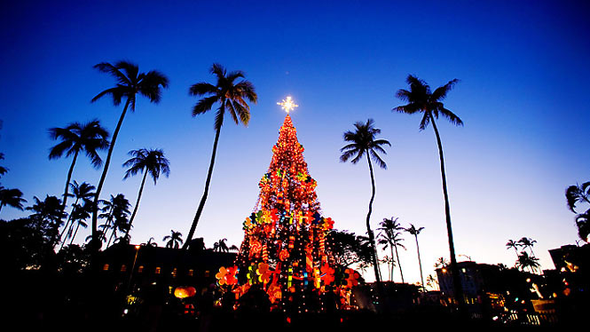 large christmas tree in hawaii