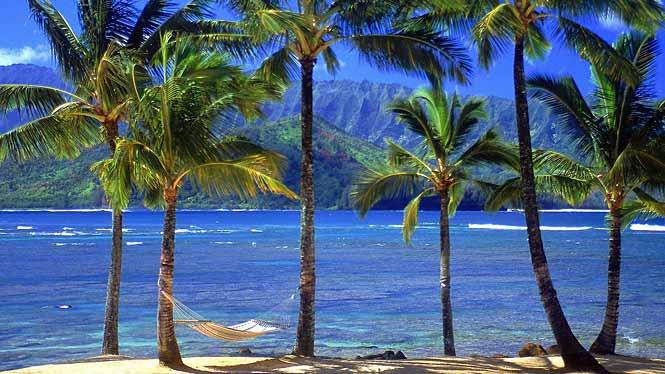 Facts About Hawaii Aloha