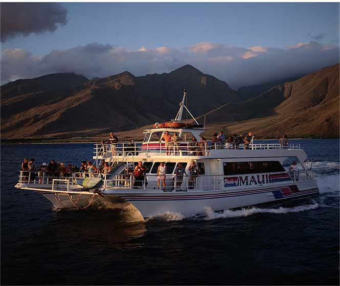 Hawaii Dinner Cruise