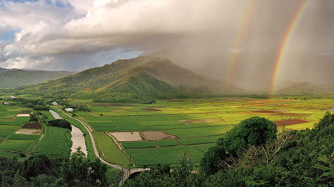 Hanalei lookout overlooking taro fields and a rainbow