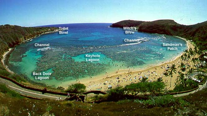Hanauma Bay is renowned as one  Bay