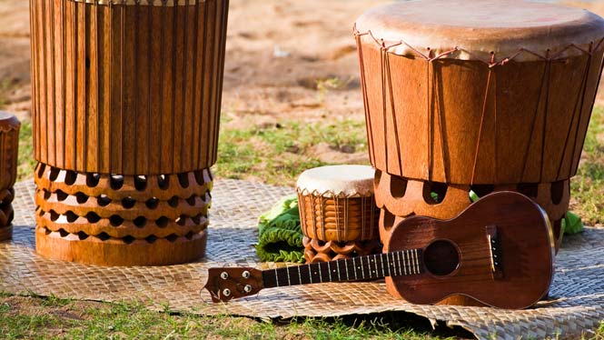 Hawaii instruments for the hula
