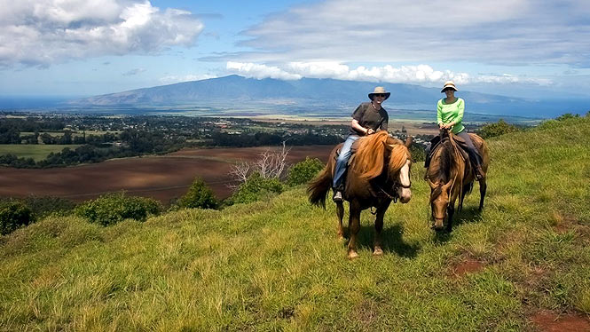 horseback riding maui