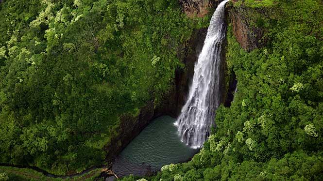 Kauai Goes Hollywood
