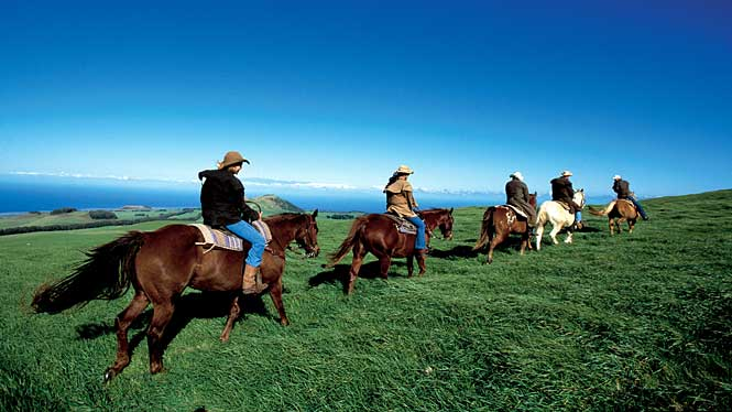 Oahu Horseback Adventures