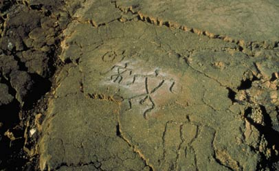 Lanai Petroglyphs