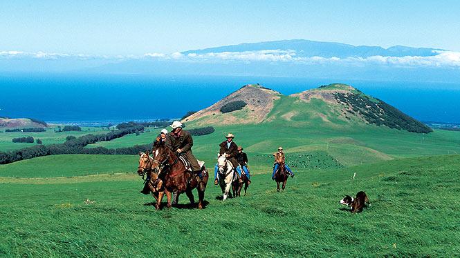Horseback Riding on a ranch