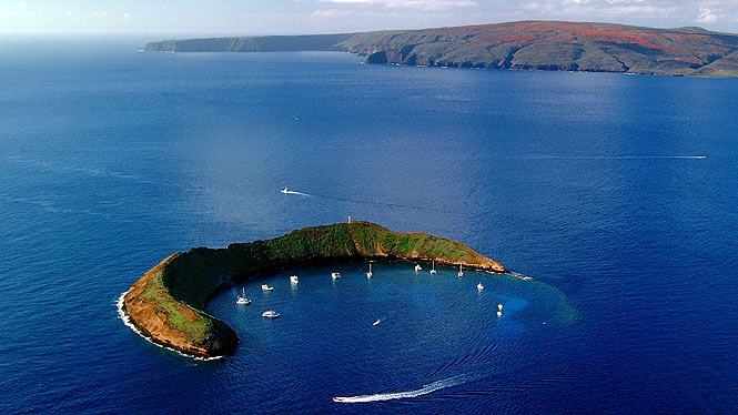Tours at molokini for world class snorkeling