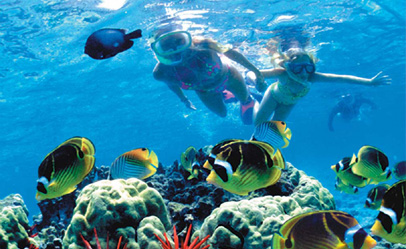 Snorkeling with body glove cruises
