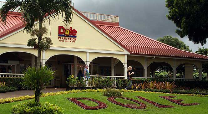 Dole Plantation-Where Pineapple Still Rules