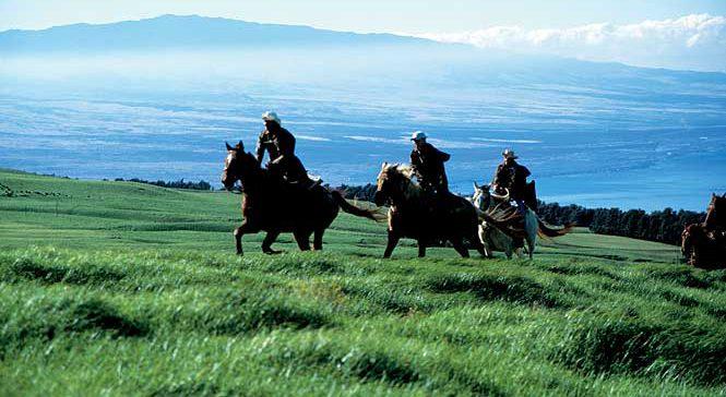 Lanai on Horseback