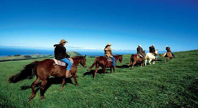 Oahu Horseback Adventures