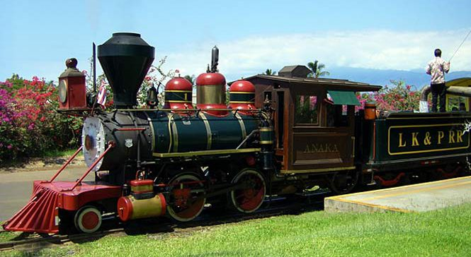 Sugar cane train ride