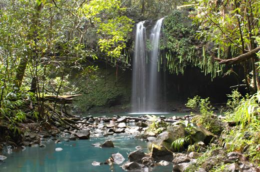 Maui rainforest waterfall hiking tour is a great destination on Maui