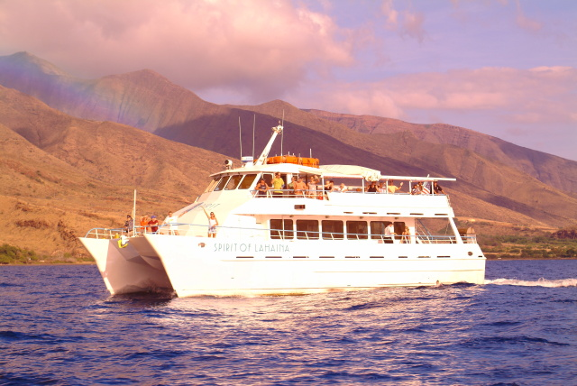 Maui sunset dinner cruise is one of many things to do on Maui