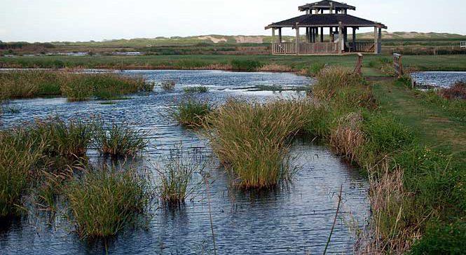 James Campbell National Wildlife Refuge