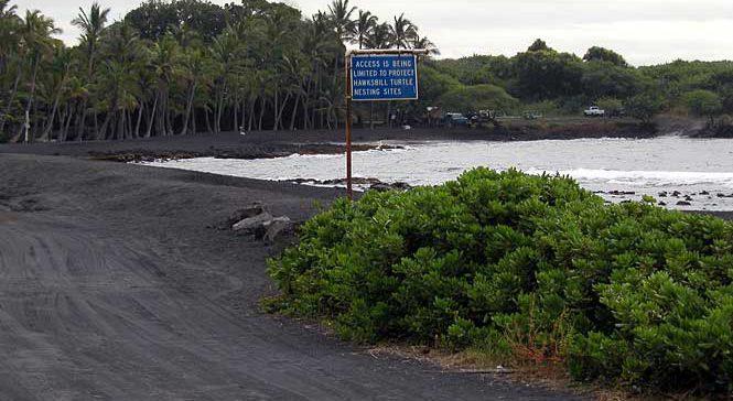 Punaluu Beach Park