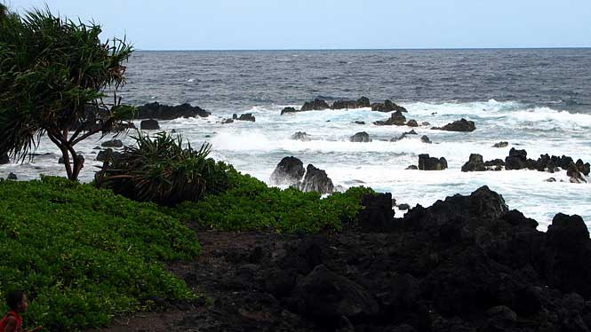 Laupahoehoe Point Park