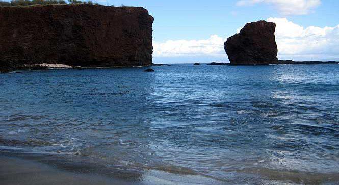 Shark's Bay