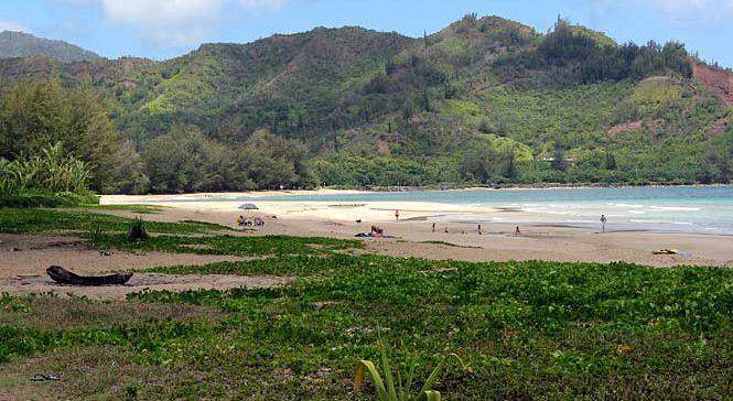 Waioli Beach Park