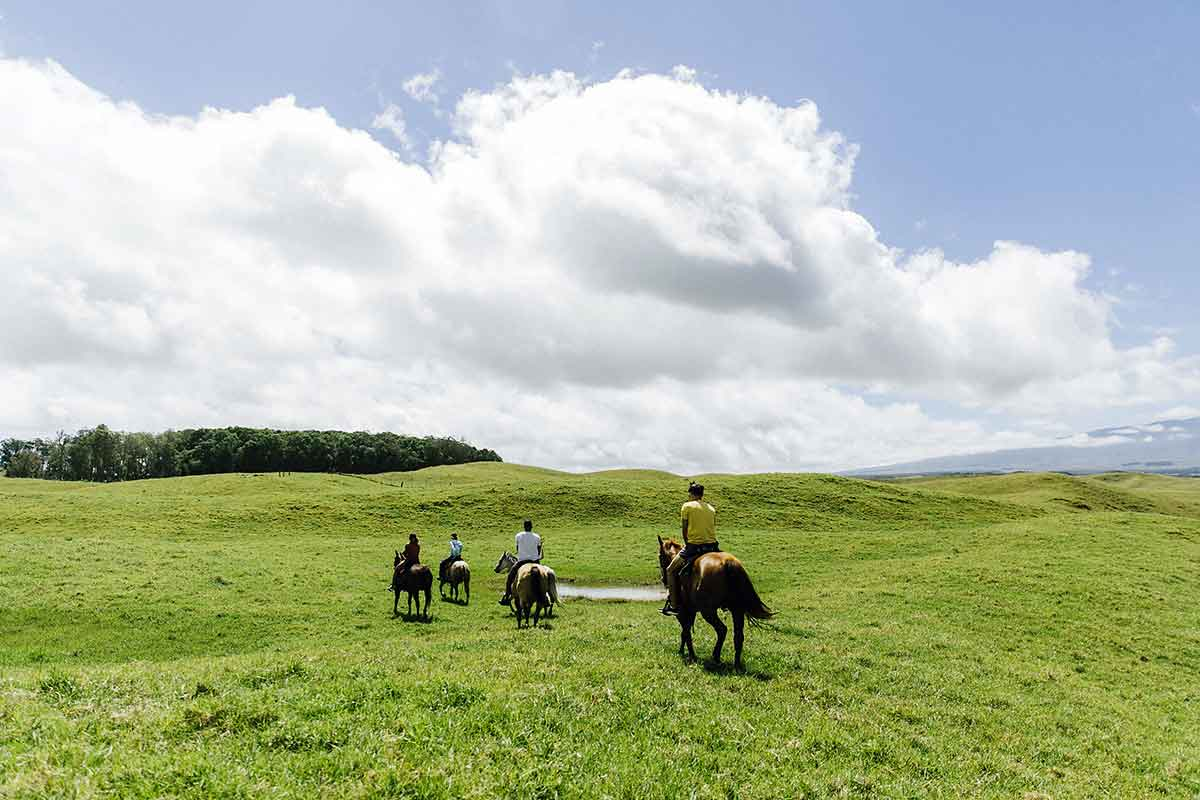 4 people riding horses on the big island prarie